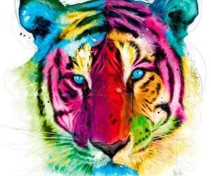 tiger, animal, and rainbow image