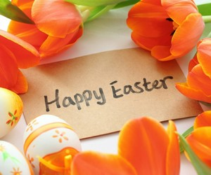 easter and tulips image