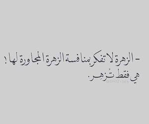 Image by zahraa alayed