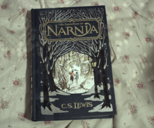 narnia, book, and c.s. lewis image