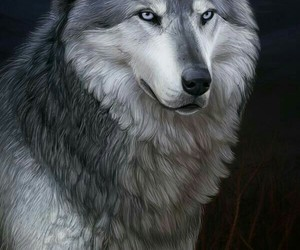 animals, sweet, and wolf image