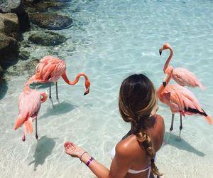 summer, girl, and flamingo image