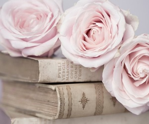 pink, books, and flowers image