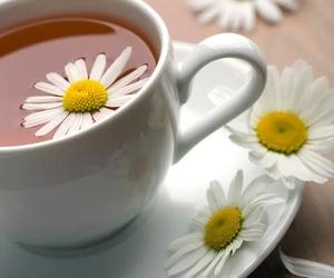 daisies and tea image