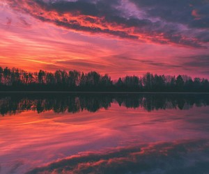 beautiful, nature, and red image