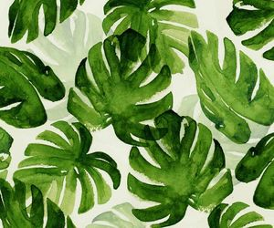 wallpaper, green, and leaves image