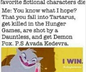 fandom, harry potter, and divergent image