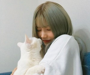 cat, ulzzang, and korea image