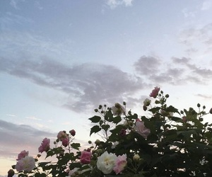 aesthetic, flowers, and alternative image
