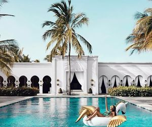float, palm trees, and pool image