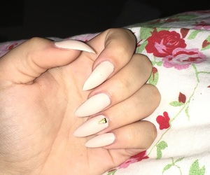 beige, nails, and spitz image