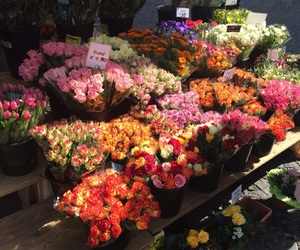 flowers, market, and roses image