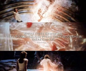 amazing, beauty, and beauty and the beast image