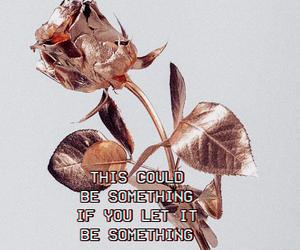 flowers, Lyrics, and love image