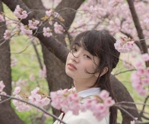 小松菜奈, 桜, and 春 image