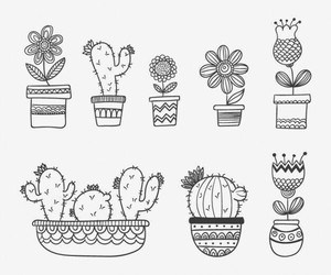 black and white, doodles, and cactus image