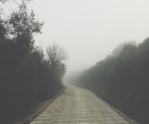 adventure, foggy, and mountain image
