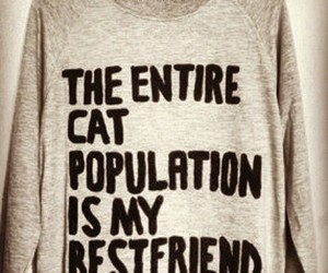 cat, population, and bestfriend image