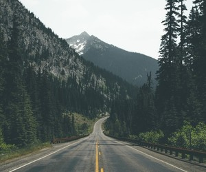 forest, mountain, and road image