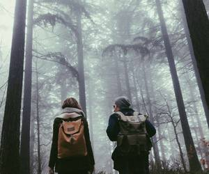 travel, couple, and forest image