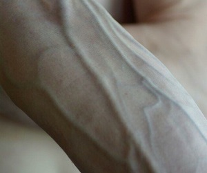 pale and veins image