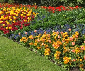 blooming, spring, and st james park image