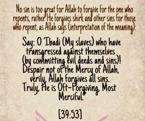 muslims, quran, and ayat image