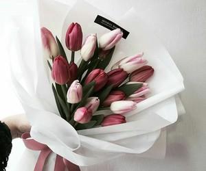 flowers fleurs image