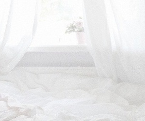 header, white, and twitter image