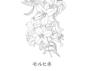 art, flowers, and manga image