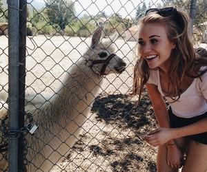 beautiful, girl, and lama image