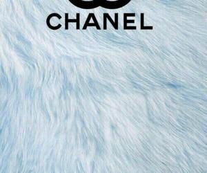 blue, chanel, and elegant image