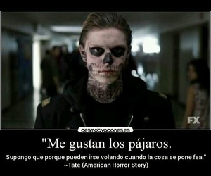 evan peters, murder house, and tate langdon image