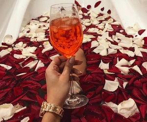 roses, luxury, and drink image