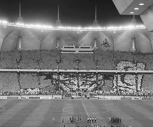 arab, black and white, and saudi image