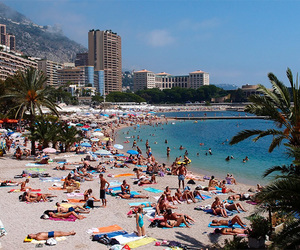 things to do in monaco image