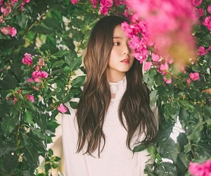idol, korean, and irene image