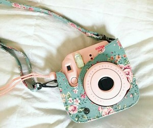 camera, flowers, and fujifilm image