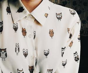 fashion, owl, and shirt image