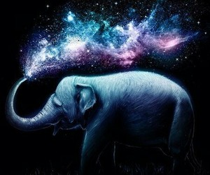 elephant, art, and galaxy image