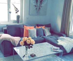 blogger, living room, and roses image
