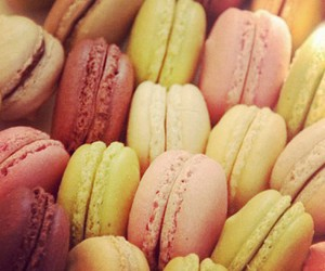 food, macaroons, and france image