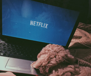 chill, relax, and netflix image