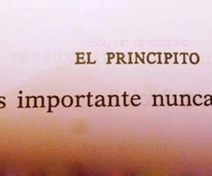 book, el principito, and frases image