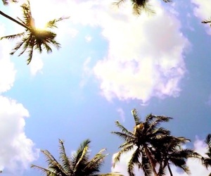 summer, wallpaper, and sky image