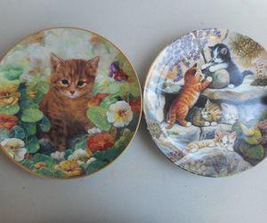 animals, cats, and ebay image