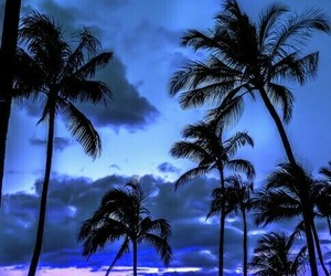beach, purple, and beautiful image