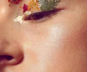 pressed flowers, highlight, and beauty image