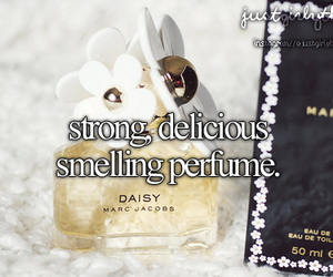 just girly things, daisy, and perfume image
