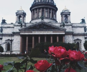 flowers and architecture image